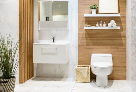 Plomberie sanitaire Saint-Martin-du-Var